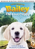 Adventures Of Baily The Lost Puppy