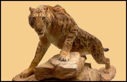 Extinct Big Cats